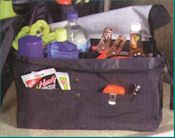 Trunk Organizer- Click On Image To Enlarge